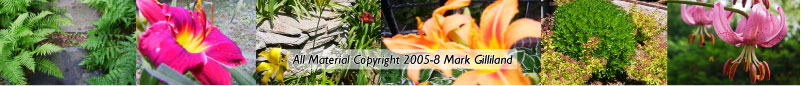 all materials copyright 2005-2010 Mark Gilliland